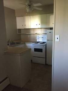 One Bedroom Suites Park Royal Manor for Rent - 4514 48 Avenue