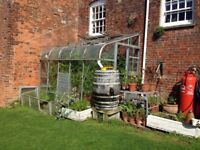 Free Greenhouse - Must be taken by Wednesday 26th July 2017