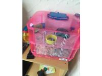 Dwarf hamster with cage Girl