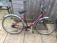 Raleigh Caprice Ladies Town Bike. Serviced, Free D-Lock, Lights, Delivery. Warranty