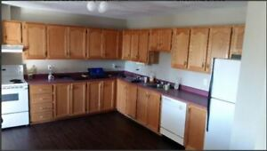 Rent (Lacewood terminal / Clayton Park) -Avail July 6th onwards