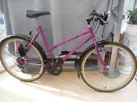 ADULTS GOOD QUALITY LADIES RALEIGH MOUNTAIN BIKE IN VGC
