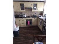 Other kitchen storage for sale in East London London Gumtree