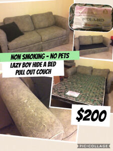 Lazy boy pull out couch