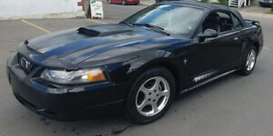 2003 Ford Mustang Cuir Kit Poney Cabriolet