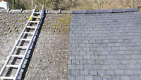Cheapest Moss and Gutter Cleaning on the island 2507131859