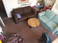 Room for rent in central Brighton house!