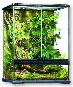 Looking for aquarium set up for leopard gecko