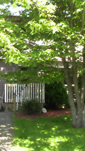 Professionally Renovated 3 Bedroom Duplex Avail Oct 1 or sooner