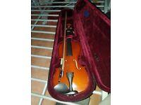 Child size violin