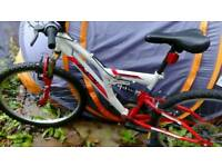 indi unleashed Navada children bike