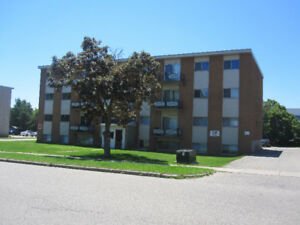 APARTMENT FOR RENT - 2 BDRM ON 407 HAZEL STREET, WATERLOO
