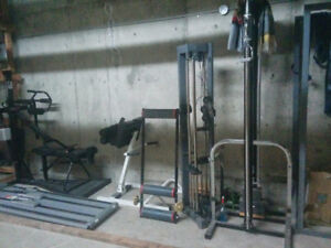 EXERCISE/GYM/  TRAINING EQUIPMENT/ BOULDERING WALL