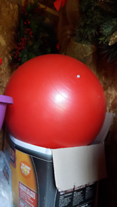 Physical Therapy Quality Exercise Ball