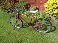 2 mtb bike,s for sale