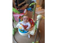 Rainforest fisherprice jumperoo
