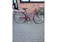 Ladies Dutch style bike