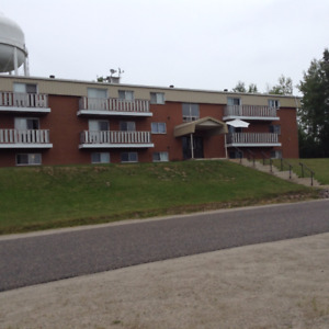 2 Apartment Buildings for Sale in Longlac (Greenstone)