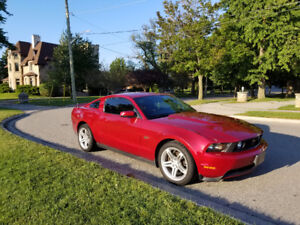 2010 Ford Mustang Gt No Trades