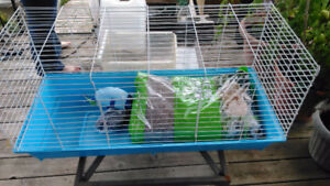 Large rabbit cage with bedding dishes and accessories
