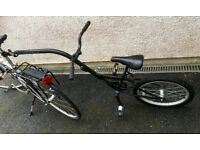 Ditto tag along cycle for young child-allows child to pedal and propel you both