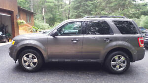 *IMMACULATE*  2011 Ford Escape XLT. *IMMACULATE*