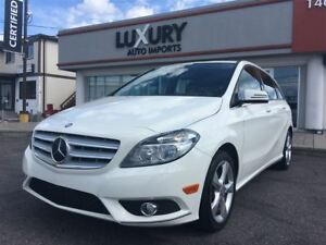 2014 Mercedes-Benz B-Class Sports Tourer-auto-rear canera-only 3