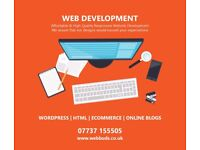 Experienced Web Developer | Wordpress | Magento | Online Stores Development