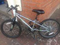 Apollo Spektor Kids Mountain Bike