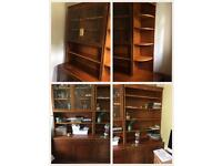 Great bookcase/ cabinets