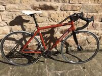 Specialized Langster Singlespeed / Fixie Road bike - Skull Edition - Medium 54cm - £200 ONO