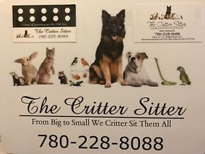 EXPERIENCED PET SITTER