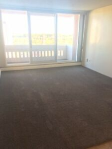 Downtown River-View 16th Floor Pet Friendly 1 Bedroom for August
