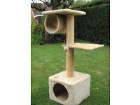 CAT CLIMBING TOWER
