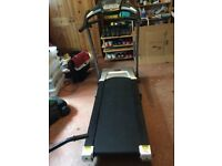 Roger Black Gold Medal Treadmill
