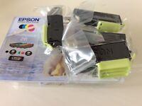 Epson print cartridges.