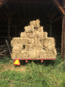 Square Timothy Bales