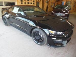 2017 Ford Mustang Shelby GT350 Coupe (2 door)