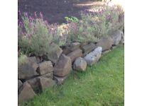 Garden Boulders and Stones
