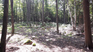 1 Acre Building Lot -- Walking distance to Stoney Lake