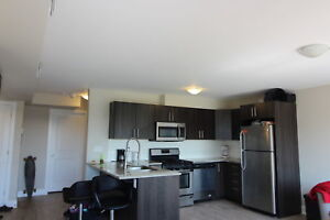 SEPT 1 MOVE IN $675 PER ROOM ALL IN STEPS AWAY FROM CU