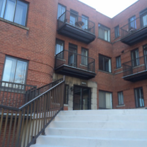 Beautiful 3.5 Apartment! Short Term Lease available!