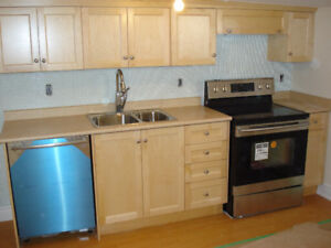 NEWLY RENOVATED ONE BEDROOM APARTMENT NEAR DUFFERIN AND COLLEGE