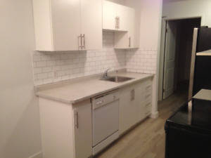 Totally renovated Condo in Cres. Acres