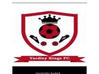 Sunday league football: goalkeeper needed