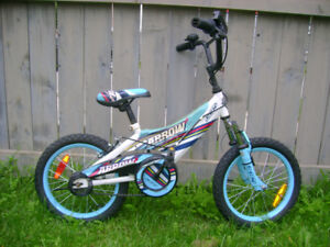 Mountain bicycle for young boys