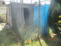 6'X6' Galvanised dog run