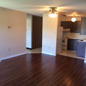 Bright, Large 1 Bedroom Available Immediately