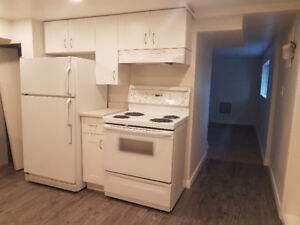 Newly renovated 1 bedroom suite plus den