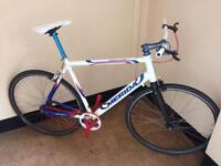 Merida xl custom built fixie/single speed hybrid bike